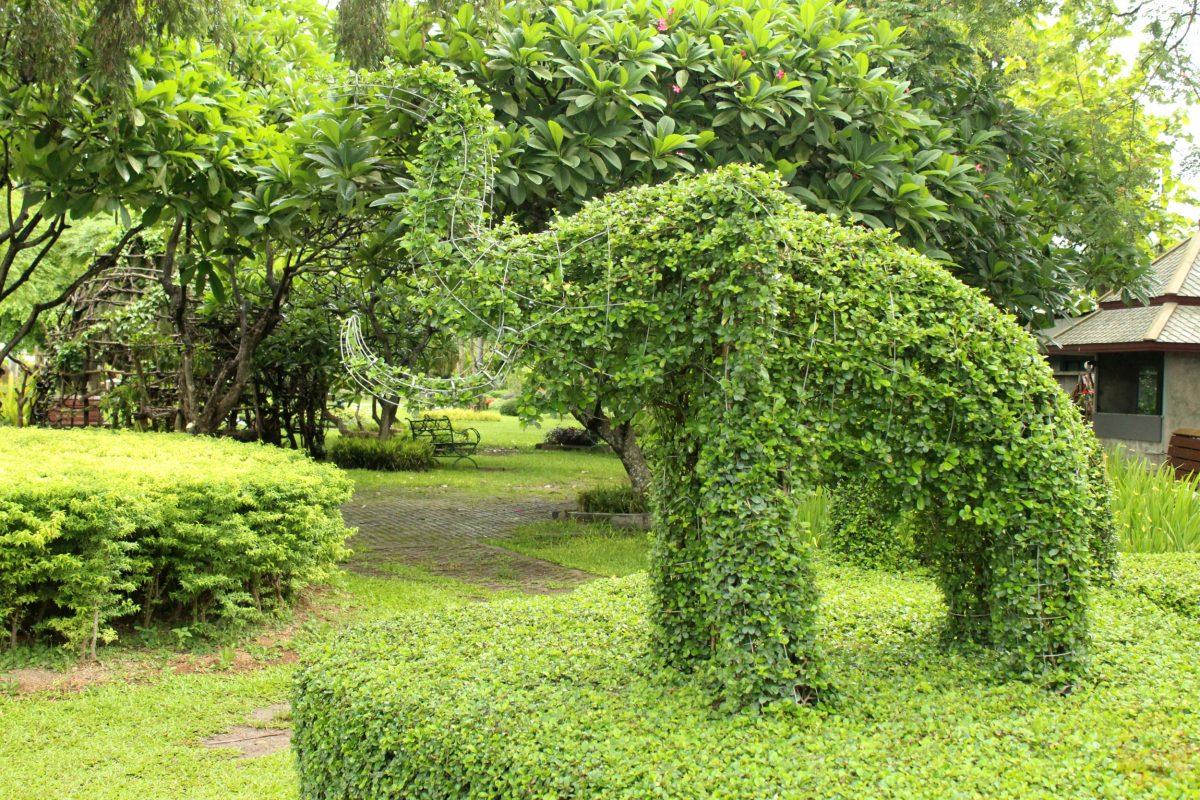 At Nong Buak Haad public park