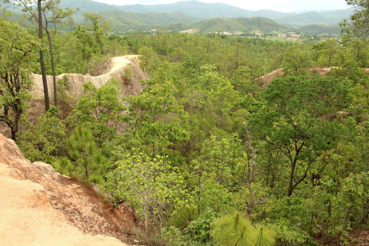what to do Pai Canyon