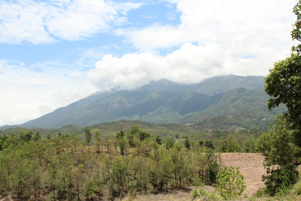 Mount Doi Inthanon how to go chiang mai