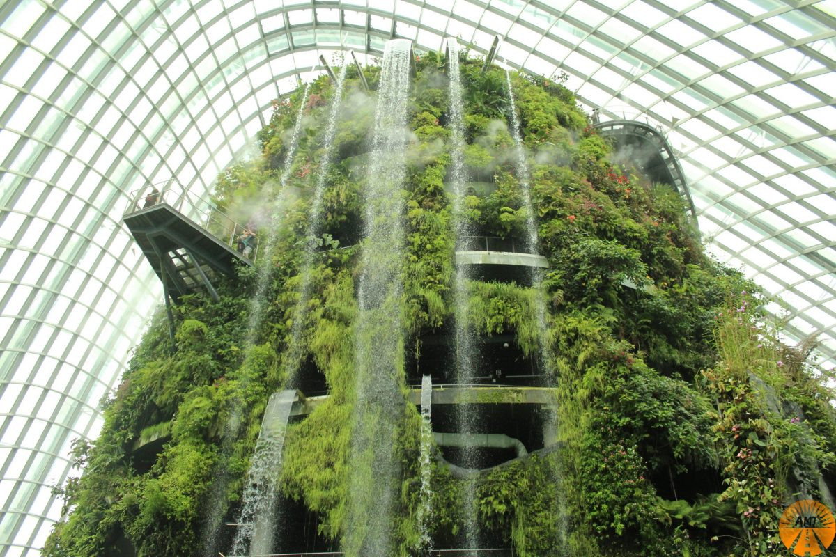 Cloud Forest, Gardens by the Bay Singapore