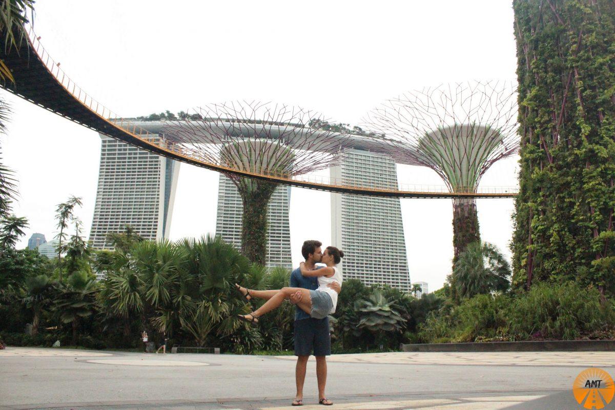 A Million Travels giardini Singapore