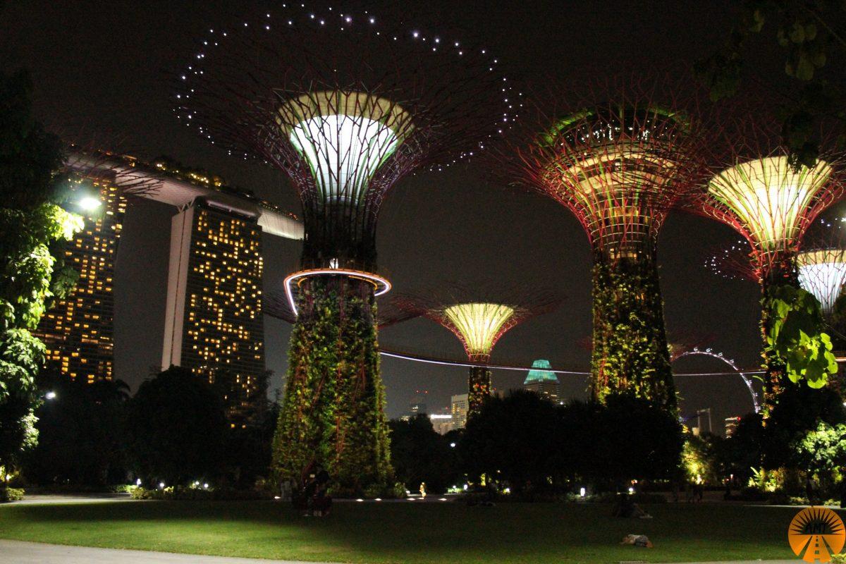 giardini alberi singapore