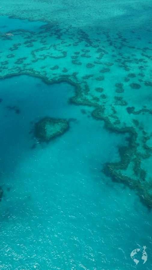 greta barrier reef whitsundays