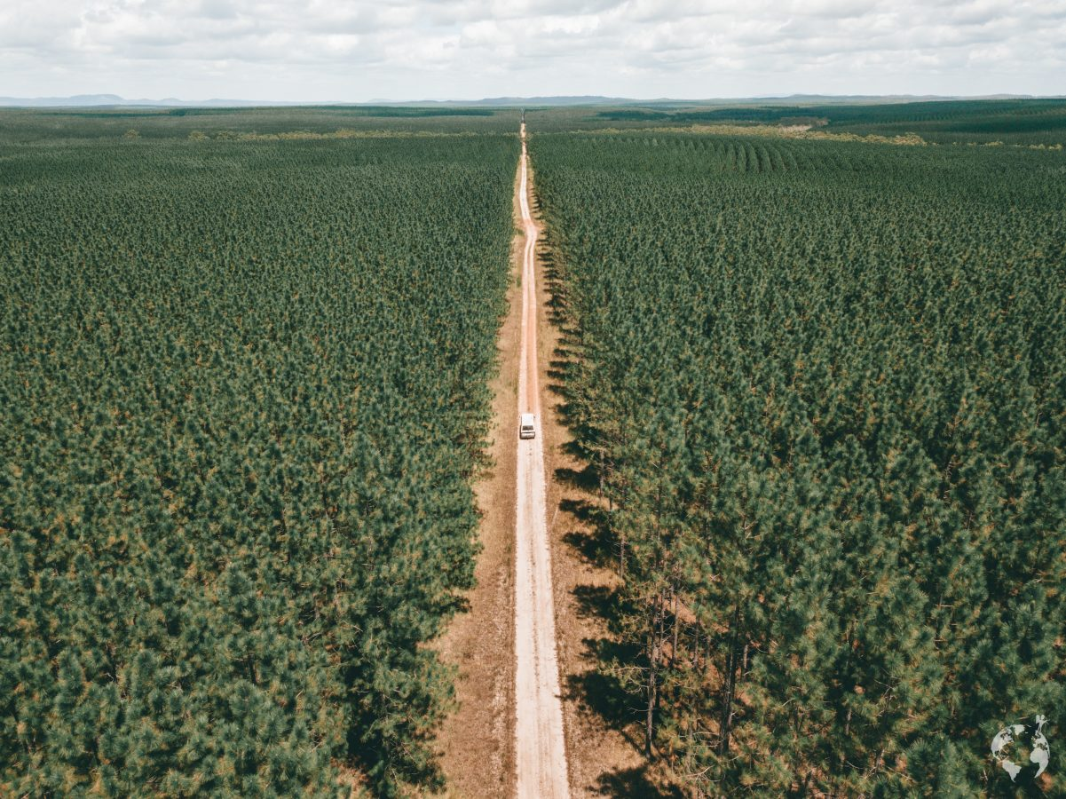 australia on the road trip