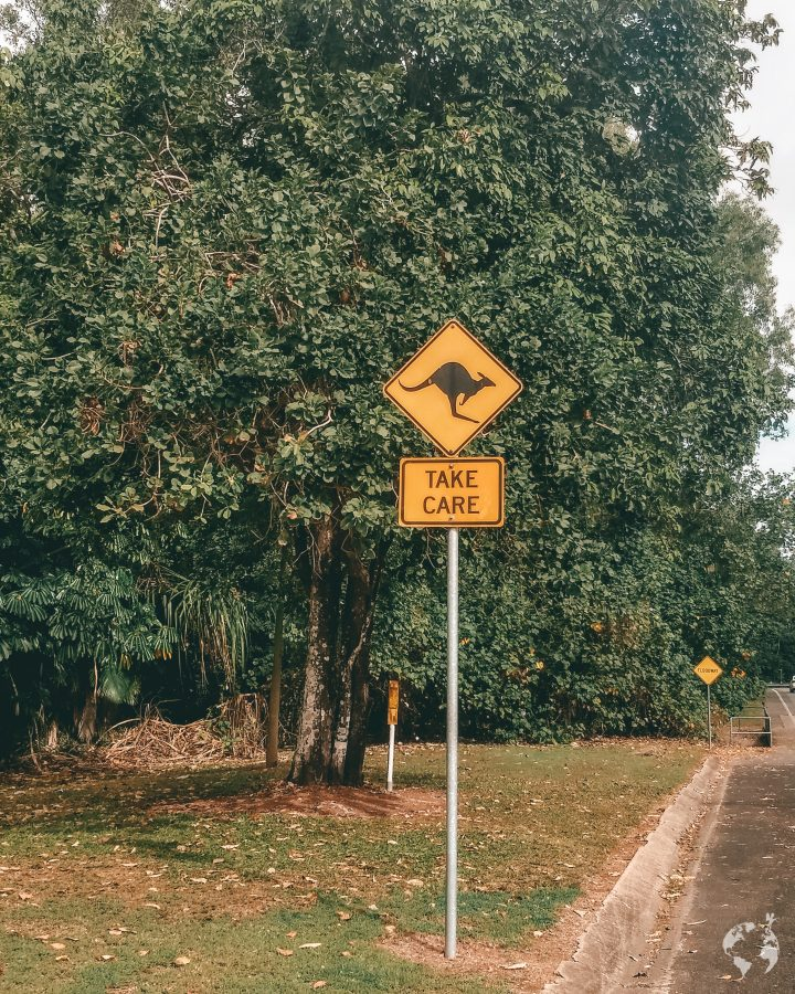 kangaroo sign australia