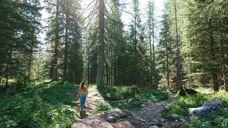 How to go to Lake Sorapis Cortina d'Ampezzo
