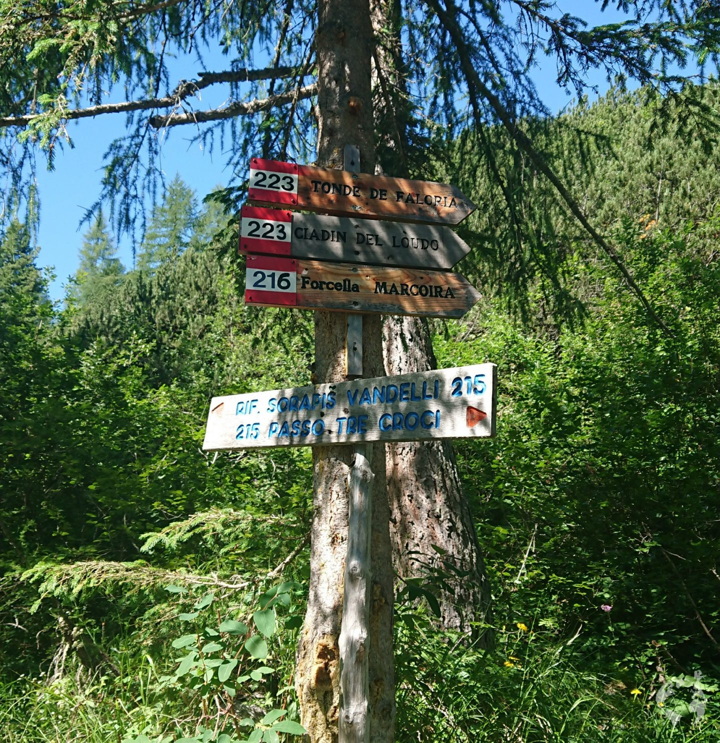 sentiero 215 passo tre croci rifugio vandelli lago sorapis