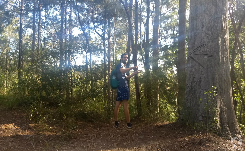 hiking ahterton tablelands